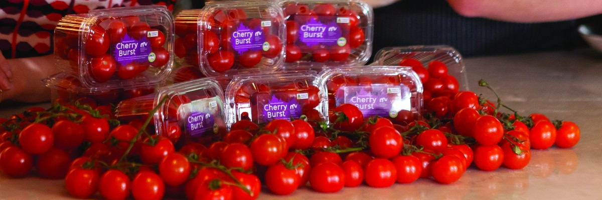 Cherry Burst tomatoes for Maddie's Month