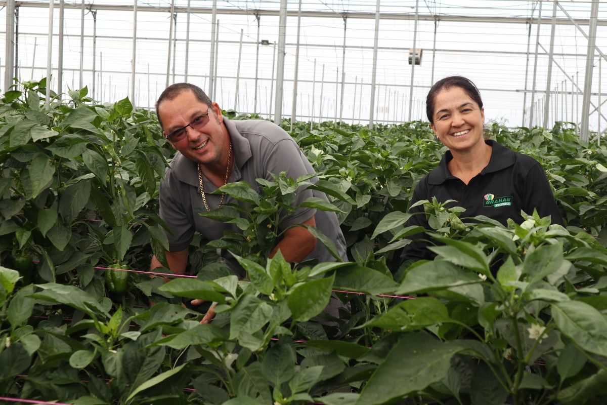 Andrew and Zurri Braham of Braham Produce in a greenhouse