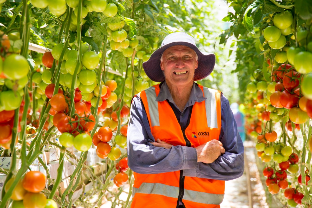 Ray Nutt is a tomato grower with Costa Tomatoes