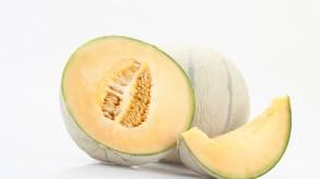 Charentais-Melone