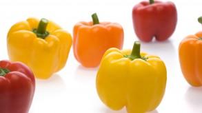 Bell pepper (capsicum or sweet pepper)