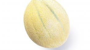 Ogenmeloen