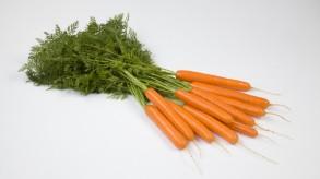 Carrots (bunching)