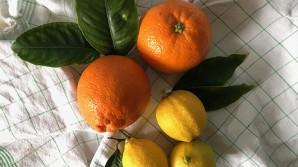 Perché conviene non gettar via le bucce degli agrumi: quali proprietà hanno e come si possono usare in cucina