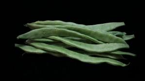 La judía verde, una adopción de gran valor nutricional