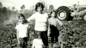 Vzpomínky na dětství na poli