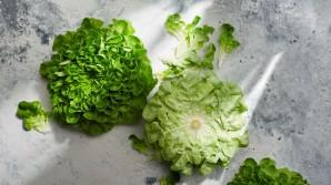 Dlouho čerstvý salát - tipy na uchovávání