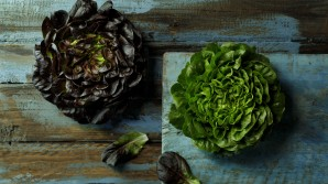 Lettuce recipes