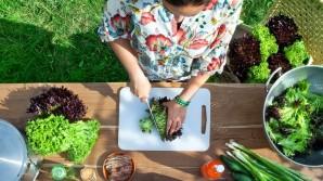 Insalate con la lattuga Salanova