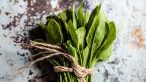 Gesneden ongekookte spinazie bevat meer antioxidanten