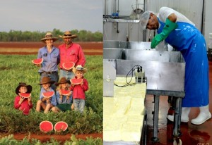 Australian stories of passion to produce delicious salad ingredients