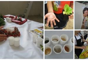 CRA-ORL e RIJK ZWAAN ITALIA insieme nel progetto 'Frutta nelle scuole'