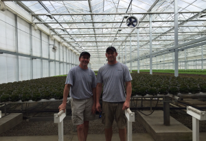 hydroponic farming lettuce great lakes growers