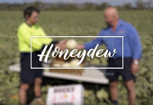Melon farmers, Evan and Des Chapman, share tips for picking a ripe honeydew melon.