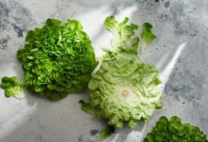 So bleibt Ihr Salat möglichst lange frisch