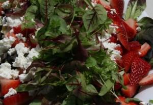 Festive season calls for colourful salads