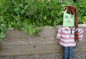 Do you have a scarecrow in your garden?