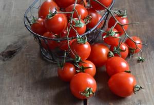 Il giro d'Italia tra i pomodori