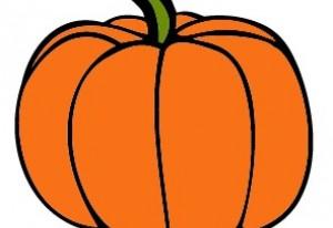 Baby food. Gaia's just loved pumpkin