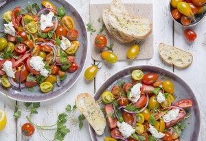 leuke tomatenweetjes