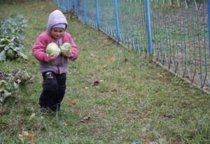 Как сделать квашенную капусту так, чтобы затмить всех?