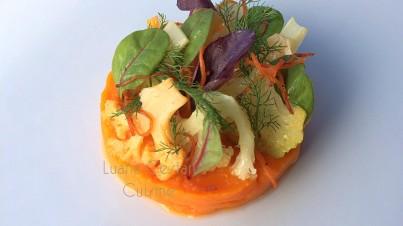 Cruditè di cavoli colorati, bietola e ciuffi di finocchio con fili di carota fritti su crema di zucca