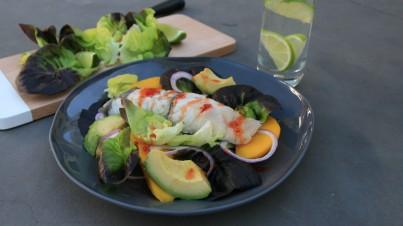 Insalata con trevalla grigliato, peperone e salsa al lime