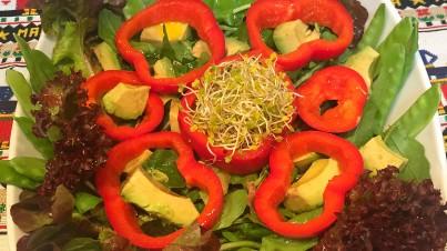 Ensalada de rúcula, tirabeques, pimiento y aguacate con germinados de brócoli