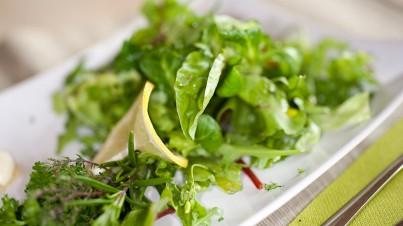 Grüner Blattsalat mit Zitronendressing und frischen Kräuter