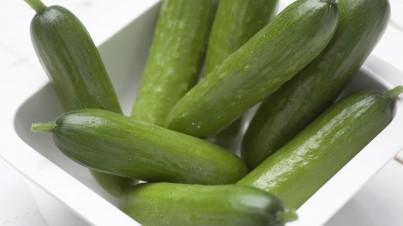 Salade de mini-concombres
