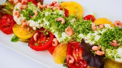 Salade met tuinkers, ricotta, garnalen en tomaat