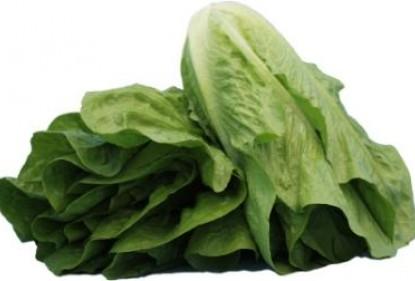 Tracciabilità nelle insalate