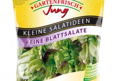 Single Salat Feine Blattsalate von Gartenfrisch