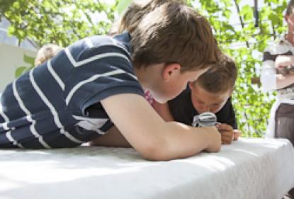 Kinder und Gemüse in den Niederlanden