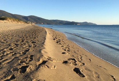 Viaggiando in Italia tra Colture e culture: Salanova®  e il parco della Maremma, tra natura e spiagge incontaminate