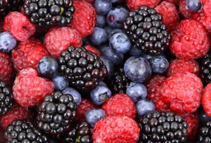 ¿Qué son y en qué alimentos encontramos antioxidantes?