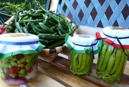 Guindillas en conserva, para aliños, aperitivos y ensaladas