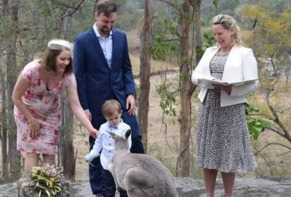 An inquisitive kangaroo joined the wedding celebrations, a story by Love my Salad blogger, Frances Tolson
