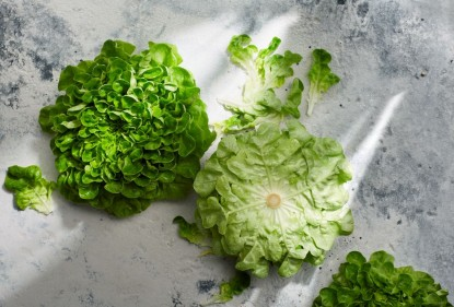 Enjoy fresh lettuce for longer - the best way to store lettuce