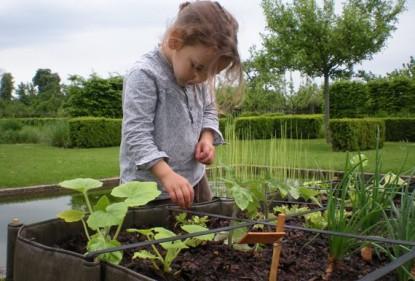 Nederlandse supermarkt helpt kinderen om groenten te telen