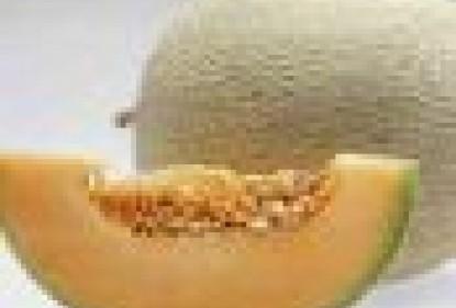 Un nuovo melone dolce per i fan australiani delle macedonie
