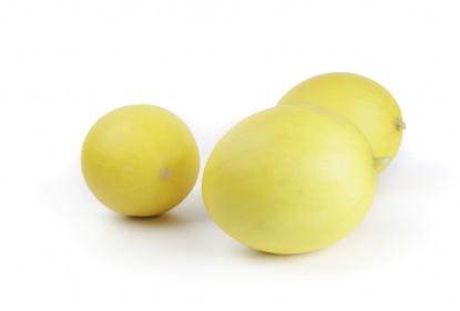 Gladial melons of Rijk Zwaan