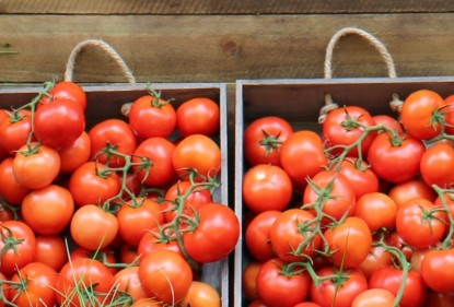 Truss tomatoes are a nutritious and delicious addition to vibrant salads or meals with their intense flavour, deep red colour and succulent burst on eating.