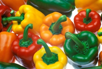 Colourful capsicums are sweet and delicious