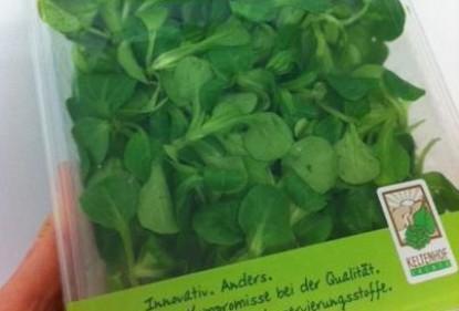 Feldsalat vom Keltenhof