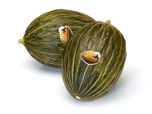 Meloun i v zimě