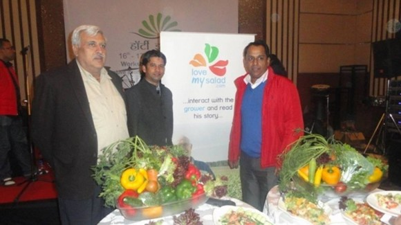 Professionals enjoy salads in India