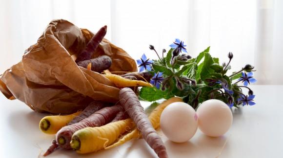 Il benessere parte dalle radici: le varietà perfette per le insalate