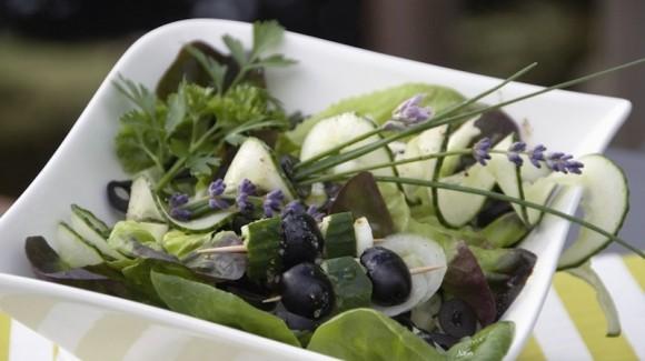 Salanova® Kopfsalat mit Oliven