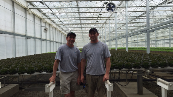 Great Lakes Grower, Tim Ryan shares his hydroponic farming story